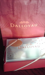 100430_dalloyau
